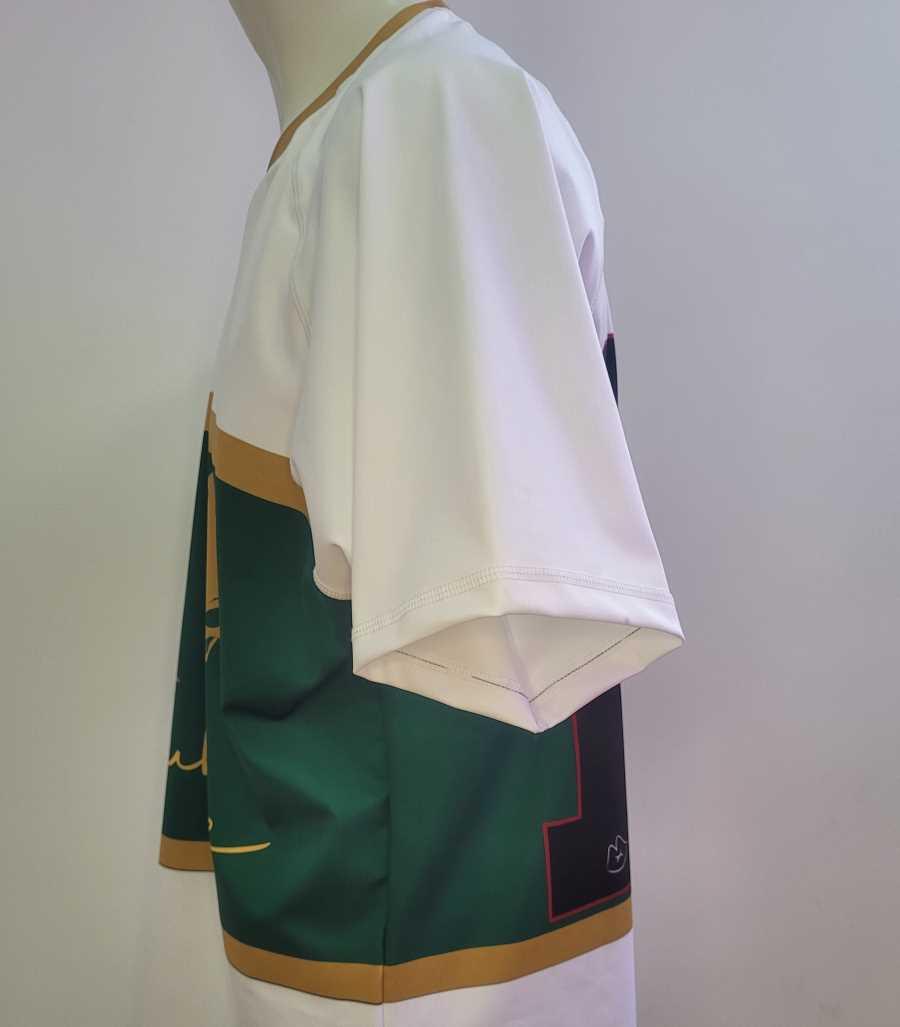 Camiseta de rugby en colores verde y blanco